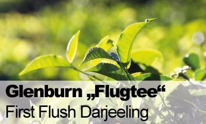 Glenburn-Banner-Startseite-First-Flush-Darjeeling-ohne-Jahreszahl-pdf